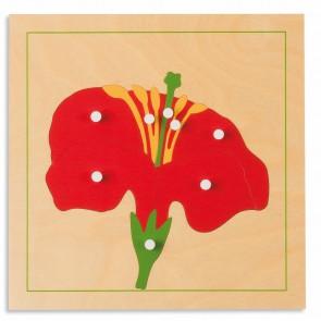 Puzzle botaniczne - kwiat, Nienhuis Montessori