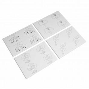 Puzzle botaniczne - karty pracy do kopiowania, Nienhuis Montessori